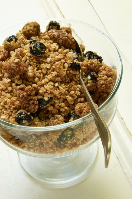 Blueberry Granola WordPress